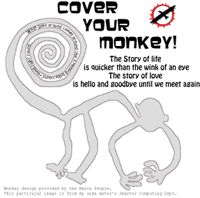 Cover Your Monkey!